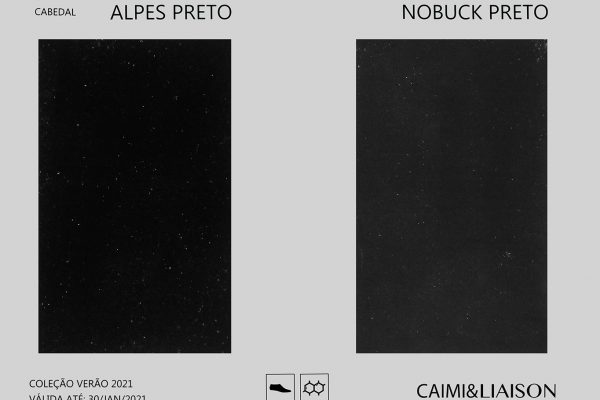 S21_cart_alpes_nobuck