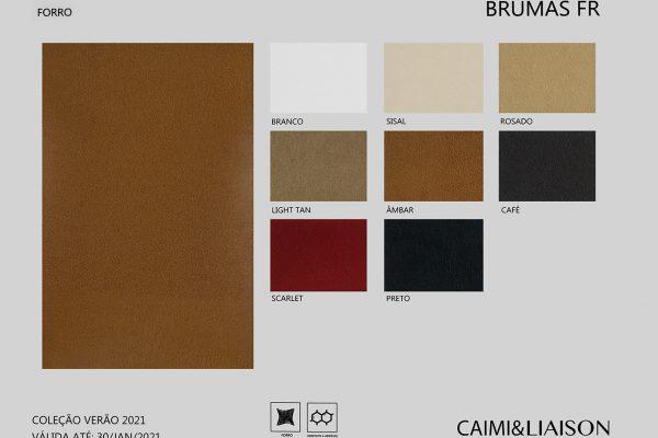 S21_cart_brumas-FR