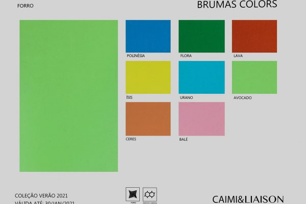 S21_cart_brumas-colors