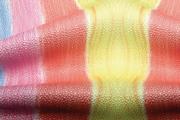 S21_sonic_multicolor